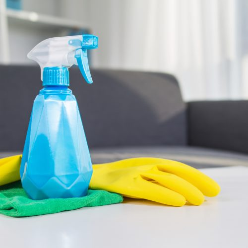 table top house cleaning products : spray, glove